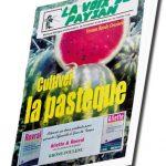 Cultiver la pastèque