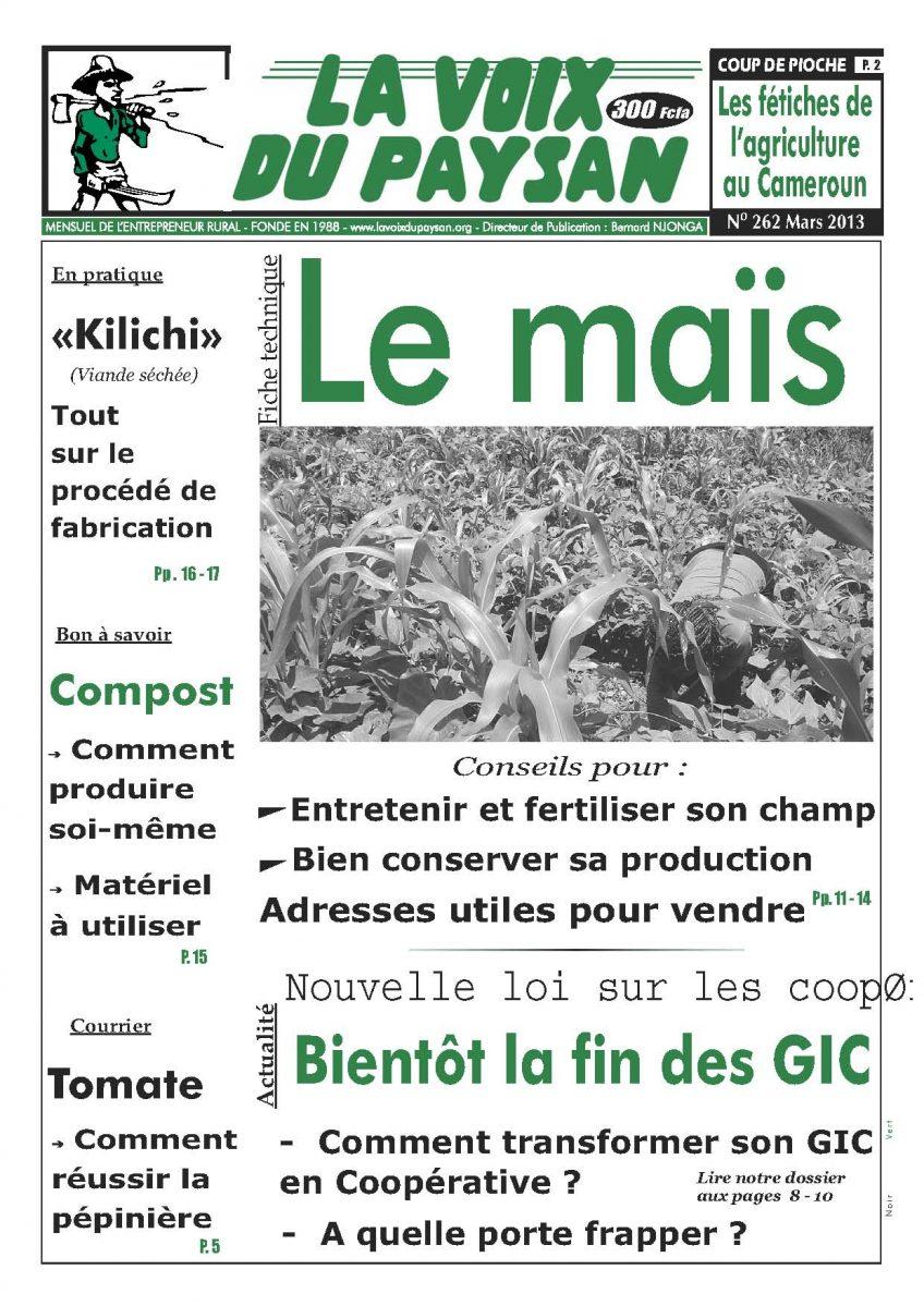 N°262 Mars 2013