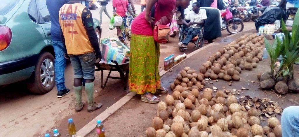 Cameroun : La commercialisation des produits du cocotier