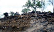 Cameroun : L'agroécologie, palliatif contre la sécheresse