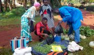 Cameroun : Un marché des aliments bio est né, le «Samedi vert»