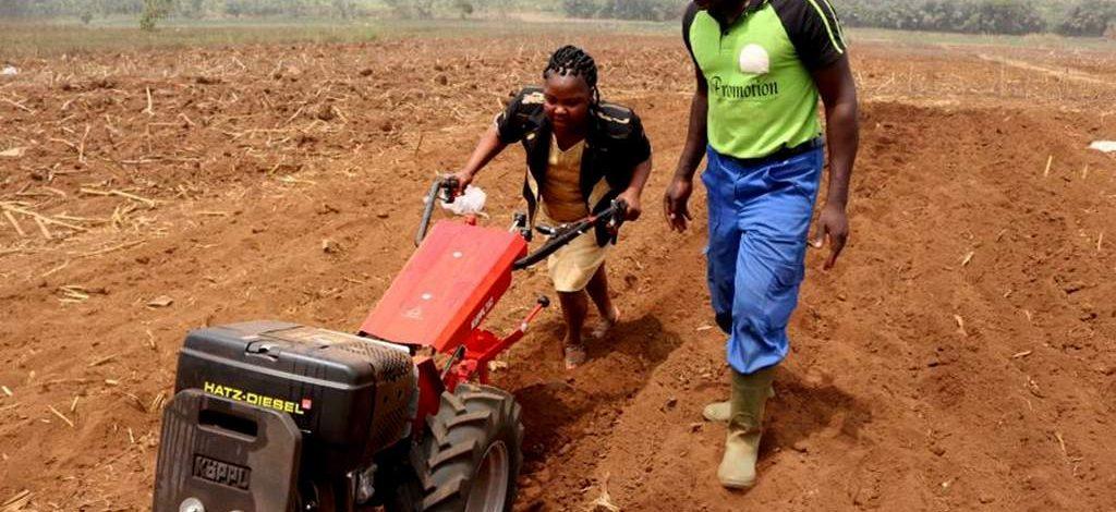 Des motoculteurs allemands sur les terres camerounaises