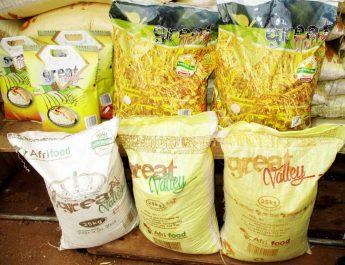 Cameroun : Le riz local est rare à Yaoundé