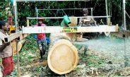 Cameroun : Les communautés amères à cause de la  taxe d'abattage