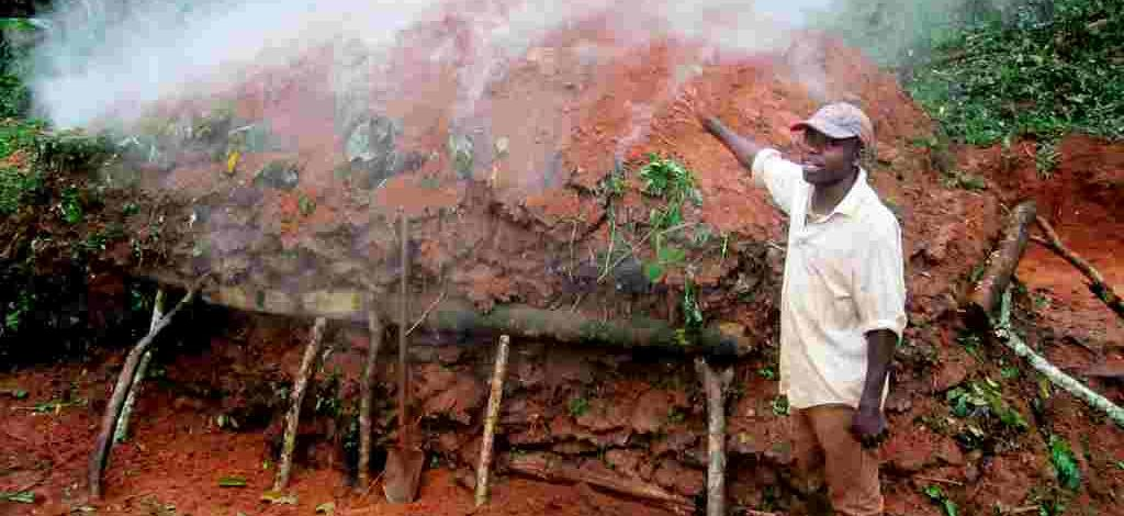 Cameroun : Produire le charbon de bois n'est pas  un sot métier