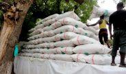 Cameroun : La vente de provende prospère à Yaoundé
