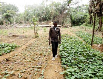 Cameroun : D'inspecteur des postes et télécommunication à agriculteur bio.