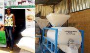 Cameroun : Nafissa Hamidou, la jeune femme de 33 ans qui produit l'aliment de bétail au Niger