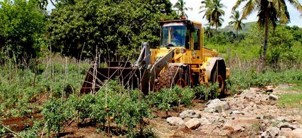 Cameroun : Indemnisation, ce qu'on doit vous payer quand on détruit vos cultures pour cause d'utilité publique
