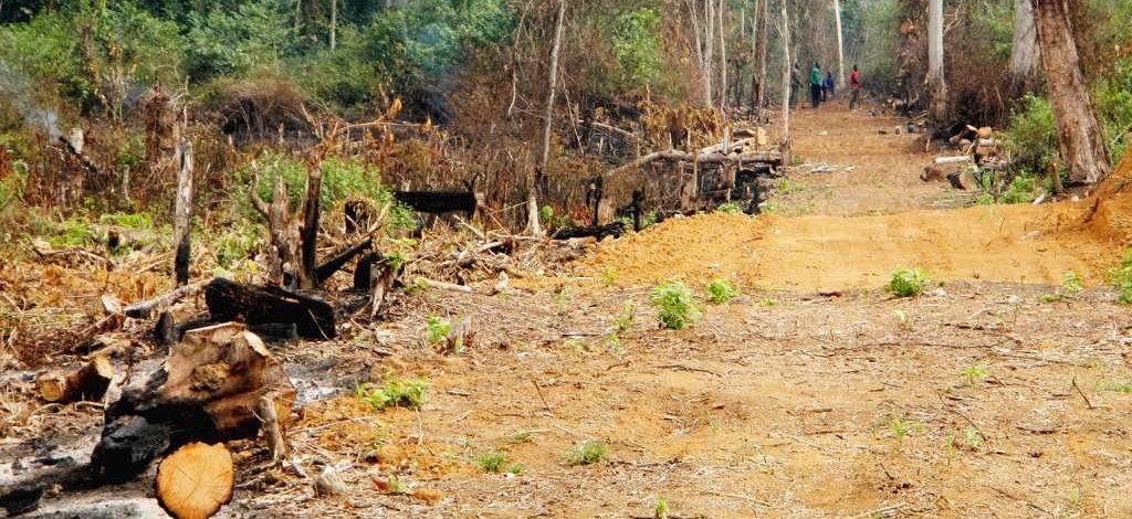 Cameroun : Tarifs appliqués aux indemnisations pour cause d'utilité publique