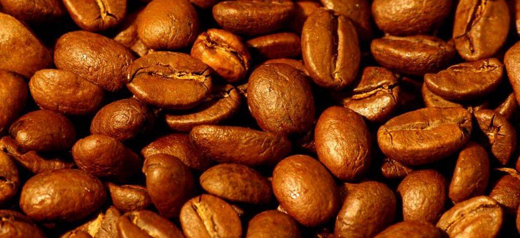 Cameroun : Un agropole de relance des filières cacao/café robusta vient d'être ouvert dans le Haut-Nyong