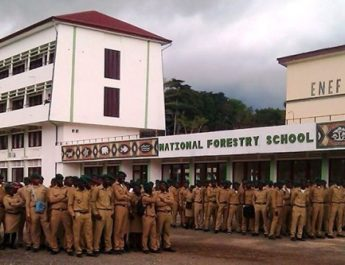 Cameroun : L'Ecole nationale des Eaux et Forêts de Mbalmayo fête ses 70 ans