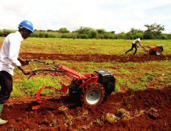 Cameroun : Tests encourageants pour les  motoculteurs KÖPPL