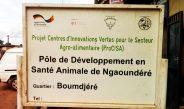 Cameroun : GIZ-ProCISA, La stratégie de transformation des PDSA en cabinets vétérinaires