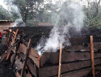 Cameroun :Technique de production améliorée du charbon