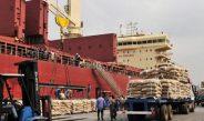 Cameroun : Coronavirus, Le Cameroun suspend l'importation d'animaux et produits halieutiques provenant des pays touchés par l'épidémie