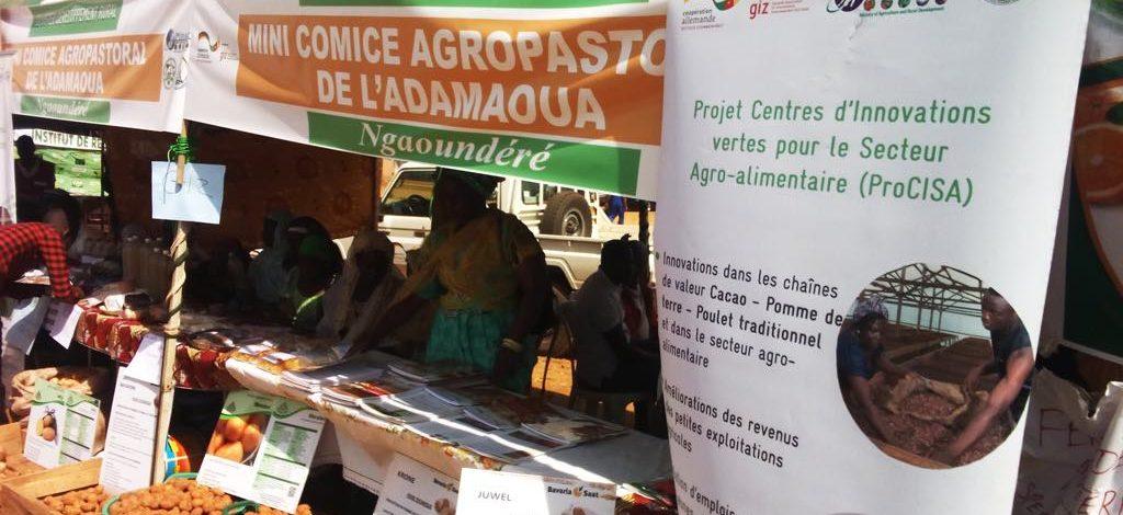 Cameroun : GIZ expose ses innovations au mini-comice de Ngaoundéré