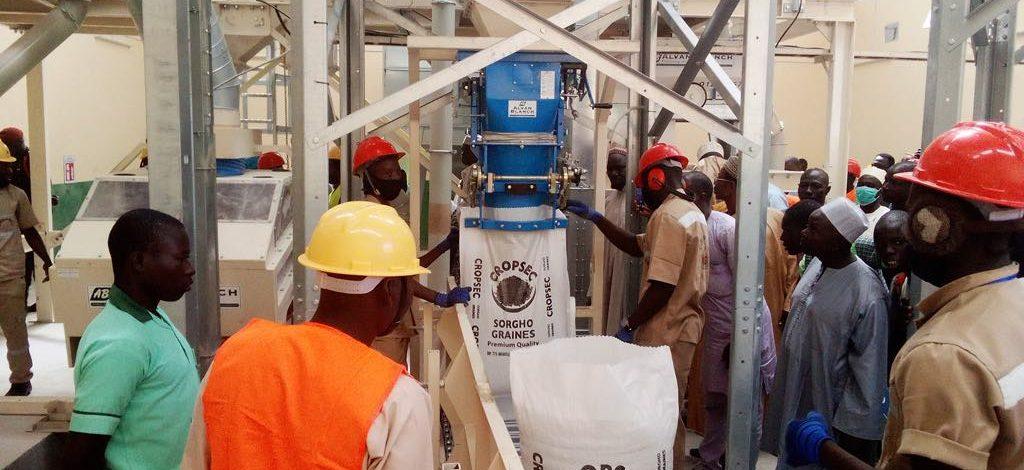 Cameroun : Une usine de transformation de céréales inaugurée à Maroua