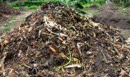 Cameroun : Méthodes de fabrication des engrais organiques