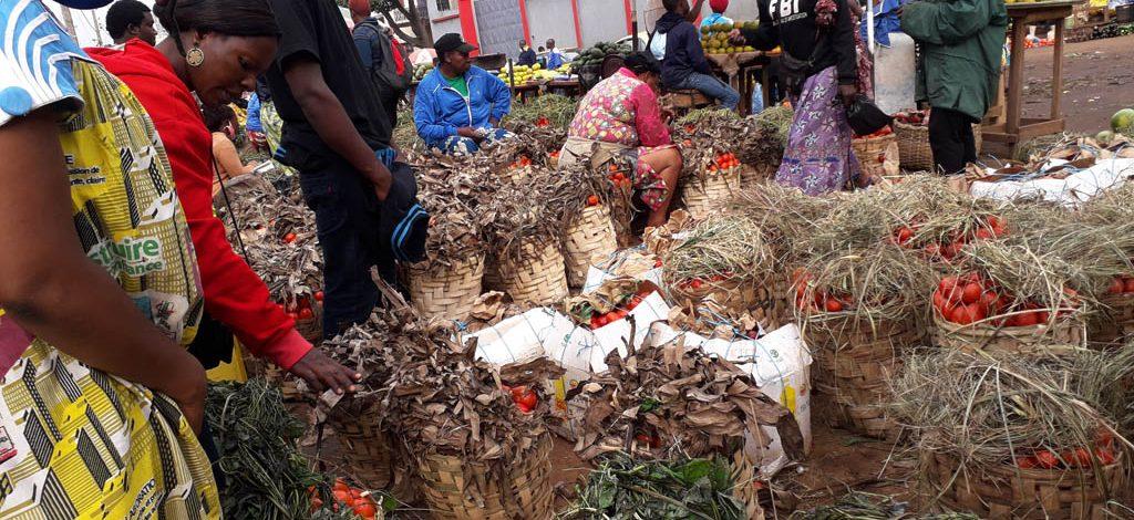 Cameroun : L'avalanche de tomates masque la pénurie alimentaire