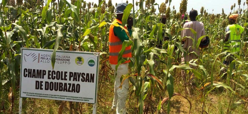 Cameroun : Projet SANTé pour la sécurité alimentaire et l'accès à l'eau